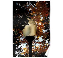 Street lamp surrounded Poster