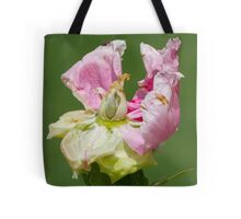 dried peony in the garden Tote Bag
