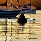 GOLDEN PADDLER - VALENTINE NSW by Bev Woodman