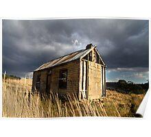 Toughing it out - Parattah, Tasmania Poster