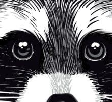 Little raccoon buddy Sticker