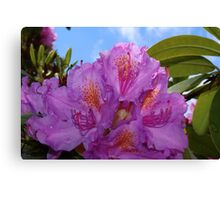 Giant Blooms Canvas Print