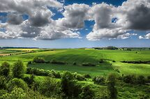 Summer Fields by timmburgess