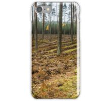 forest panorama iPhone Case/Skin