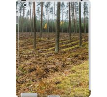 forest panorama iPad Case/Skin