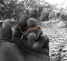 Fingerling by GuyAmazed