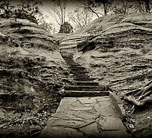 Stairs  by Sandy Keeton
