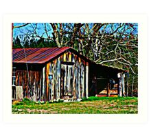 Country Shed Art Print