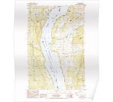 USGS Topo Map Washington State WA Rice 243437 1985 24000 Poster