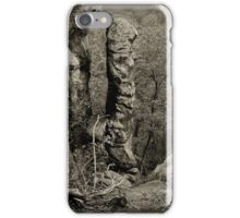 Devil's Smokestack Black and White iPhone Case/Skin