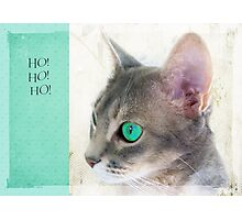 "Cat Eye ""Ho! Ho! Ho!"" Photographic Print"