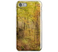Autumn at Rim Rock iPhone Case/Skin