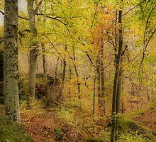 Autumn at Rim Rock by Sandy Keeton