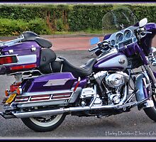 Harley Davidson Electra Glide Ultra Classic by alan tunnicliffe