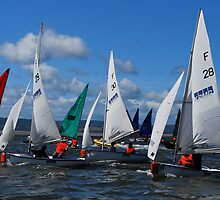wilson trophy 2012 by lawrencejoefish