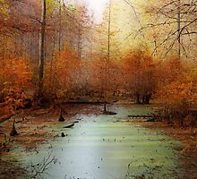 Heron Pond - Autumn by Sandy Keeton