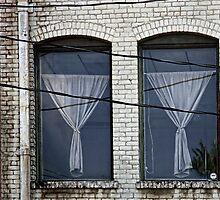 Twin Windows by CarolM