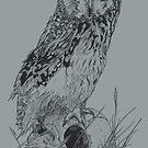 The Owl by Joe Humphrey