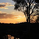 Sunset Silhouette by aussiebushstick