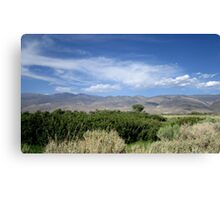Sagebrush And Mountains Canvas Print