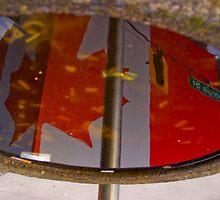 Oh Canada by Derek Lowe