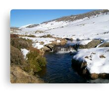 Creek Near Perisher Valley Country  NSW Canvas Print
