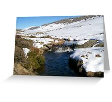 Creek Near Perisher Valley Country  NSW Greeting Card