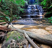 The Junction Falls by Terry Everson