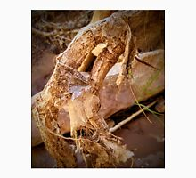 Leaves Draped on Driftwood Unisex T-Shirt