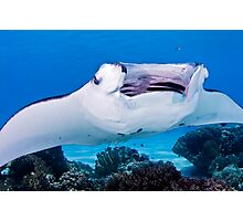 Open Wide ~ Manta being cleaned Photographic Print
