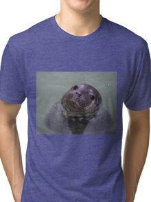 Common Seal Pup Tri-blend T-Shirt