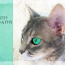 """Cat Eye """"With Sympathy"""" by Susan Werby"""