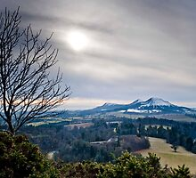 Scott's View, The Eildons, Scottish Borders by Iain MacLean