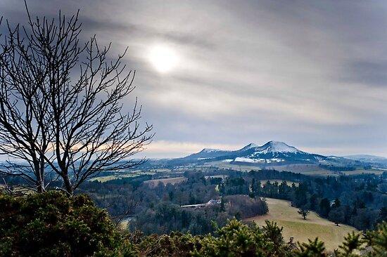 Scott's View, The Eildons, Scottish Borders by Iain MacLean