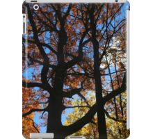 Backlit Fall Tree 2 iPad Case/Skin