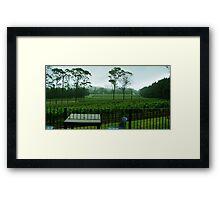 Marsden Estate Winery Framed Print