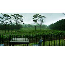 Marsden Estate Winery Photographic Print