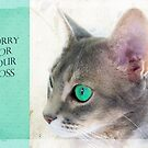 """Cat Eye """"Sorry For Your Loss"""" by Susan Werby"""