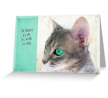 "Cat Eye ""Sorry For Your Loss"" Greeting Card"