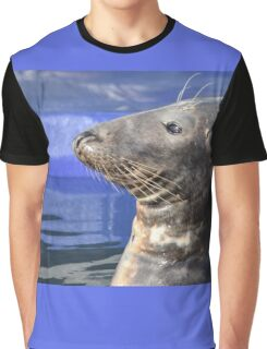 Common Seal Graphic T-Shirt