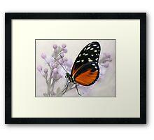 Try a little tenderness... Framed Print