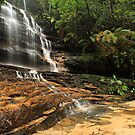 Junction Waterfalls, Lawson, NSW   by Jennifer Bailey