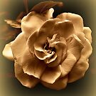 Retro Gardenia In Sepia by SuddenJim