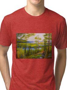 Arctic Wilderness Tri-blend T-Shirt