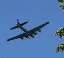 Flyover at Tahoma National Cemetery by Lorrie Davis