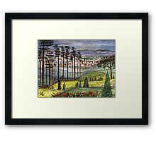 Alabama Pines Framed Print