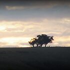 TREE ON A HILL by jainiemac