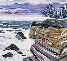 Rocky Coast Maine by lorikonkle