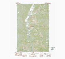 USGS Topo Map Washington State WA Louie Creek 242075 1989 24000 Kids Tee