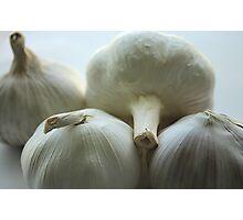 Garlic Bulbs Photographic Print